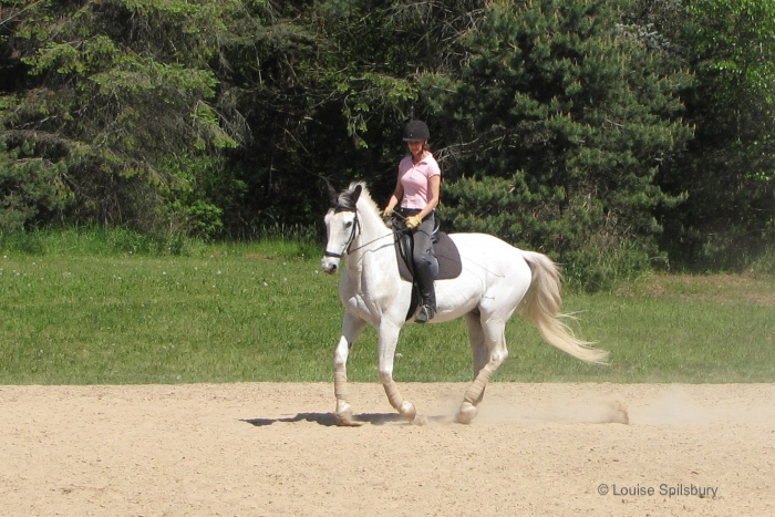 Riding lessons: riding Gandalf, tension in rider's shoulders, arms and hand, pinched lower leg