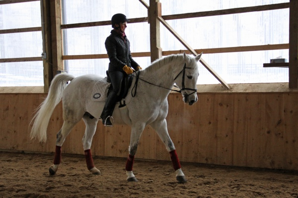 Winter Riding: author riding Tristan