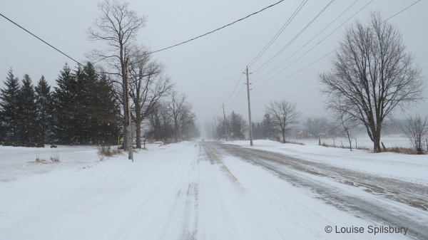 Am I Too Old To Ride?: photo of snowy country road in front of author's house