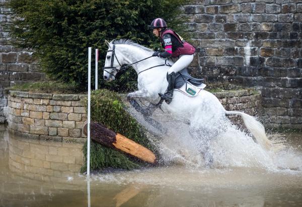 Horse-Human Bond: photo by Phil Hodkinson on Unsplash
