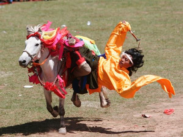 Horse-Human Bond:Photo by Zhushuibuxing on Unsplash